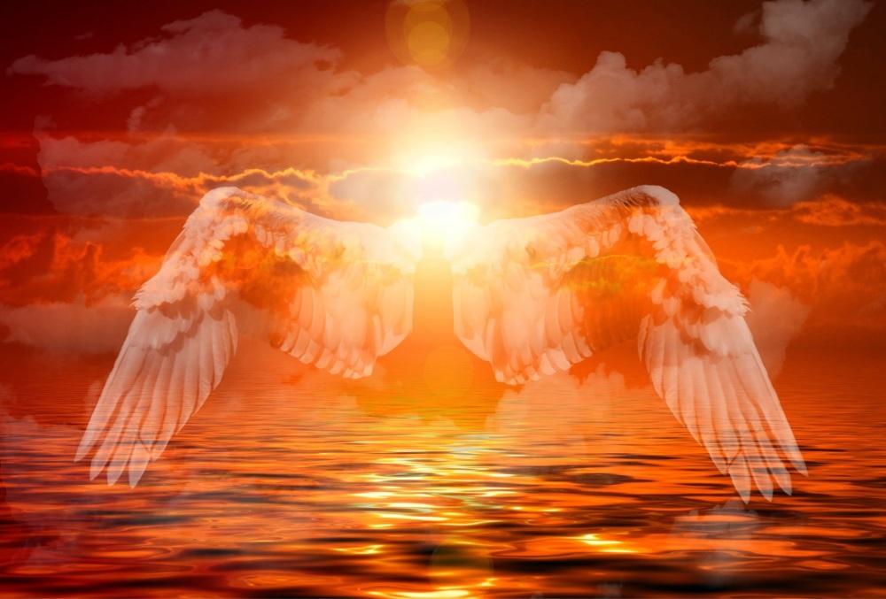 angel-574647