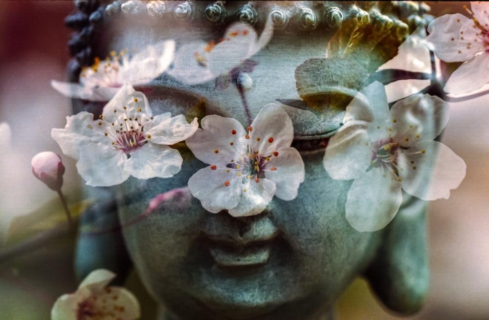 buddha-1279902_1920 (1)