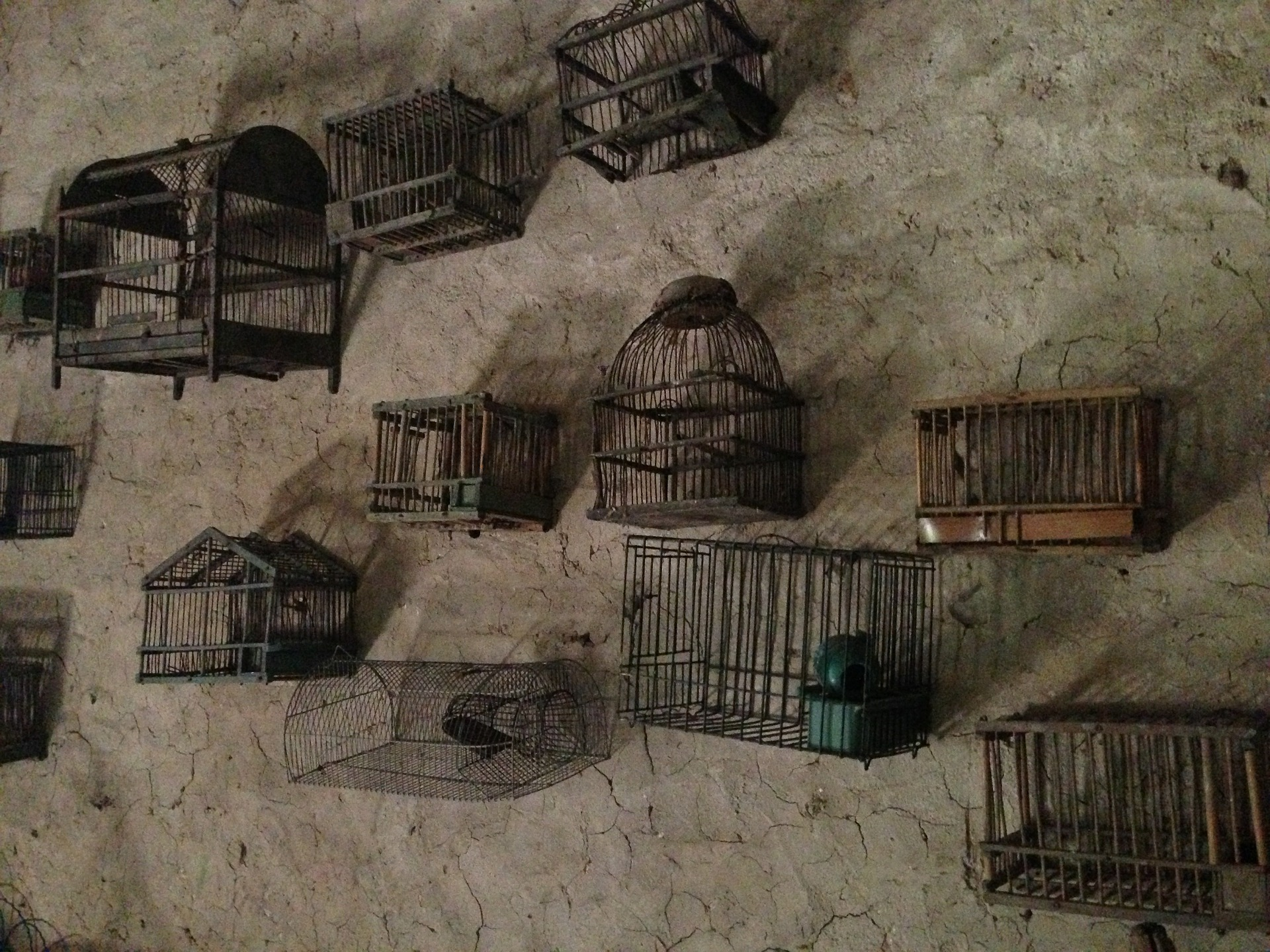 cages-363126_1920